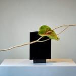 Tentoonstelling, Rotterdam, 16-06-2018,13