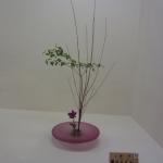 ikenoboschool-kyoto-april-2013-16