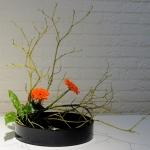 landelijke-ikebanadag-2-15nov2014-18