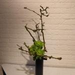 landelijke-ikebanadag-2-15nov2014-21