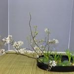 workshop-bea-batelaan-ohara-school-2-04-14afd-rotterdam-1