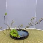 workshop-bea-batelaan-ohara-school-2-04-14afd-rotterdam-2