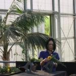 Ikebana tentoonstelling Noriko vd Linden 20151009 (6)