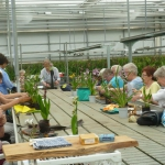 Workshop Morimono o.l.v. Els v.Vlimmeren 13-05-2016-12DH