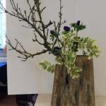 d Malustak met blauwe anemonen en Euonymus