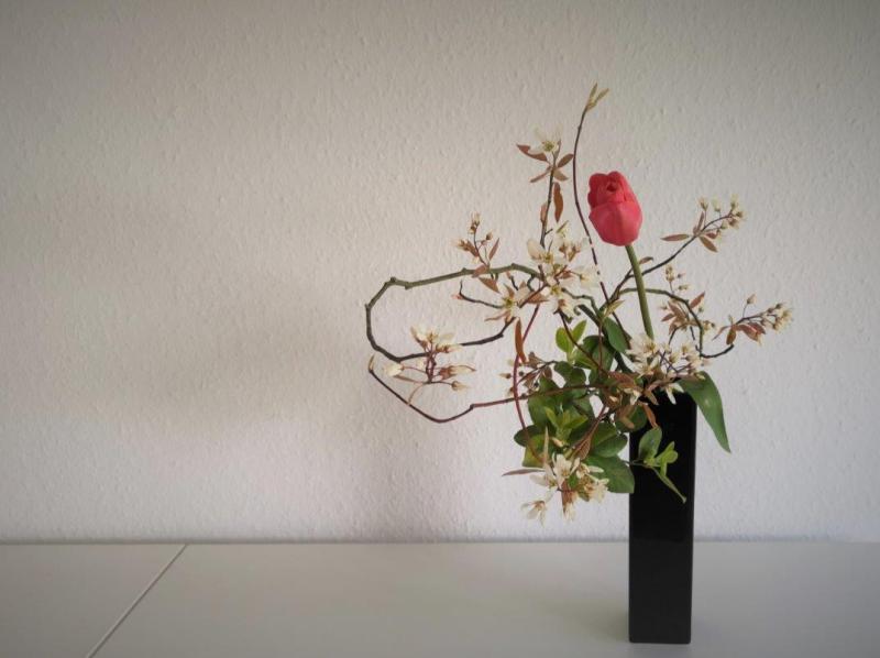 beautiful-spring-Monika-Kramer