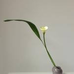 20140920-irene-kho-hana-mai-3