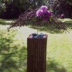 bonsaiweekenddelftjuni2013-1