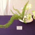 bonsaiweekenddelftjuni2013-8