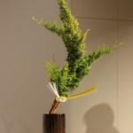ikebanarijksmuseum-5