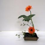 ohara-sc-rotterdam-noriko-4-9-2013-18