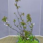 workshop-bea-batelaan-ohara-school-2-04-14afd-rotterdam-12